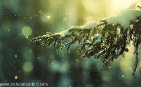 December poetry in Urdu | December tu kyun aaya hai