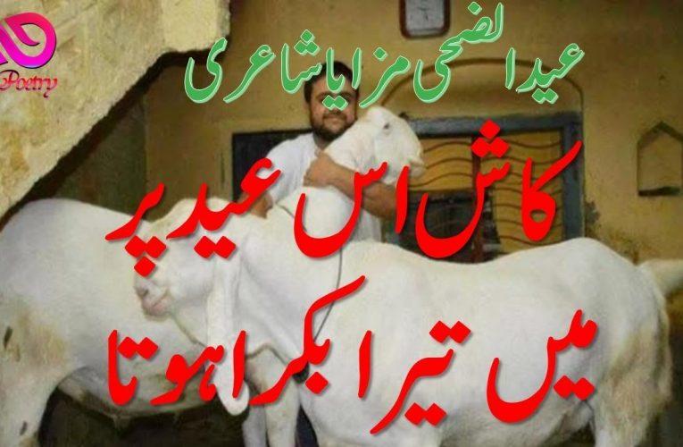 Bakra Eid Mubarak 2020 | Bakra Eid Poetry
